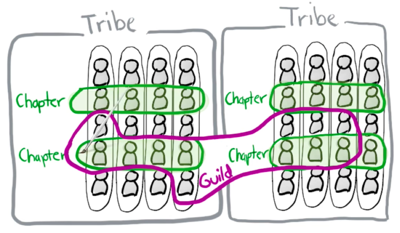 Spotifys tribe, chapter, guild model